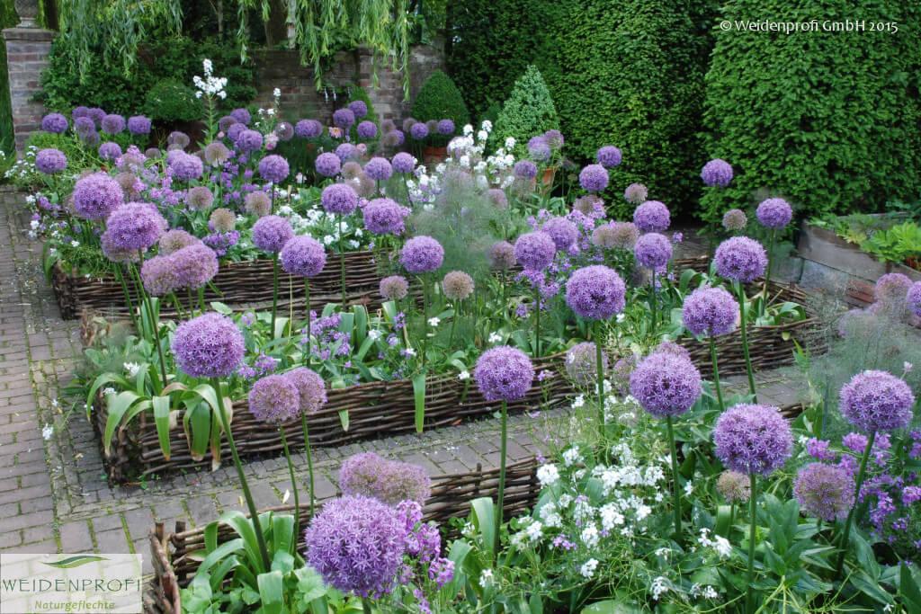 gartengestaltung: anzucht & pflanzen - weidenprofi gmbh, Garten ideen