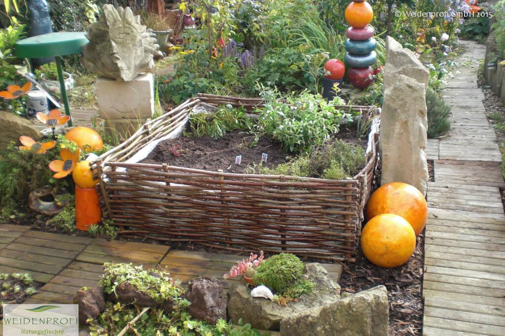 Gartengestaltung anzucht pflanzen weidenprofi gmbh weidenz une haselnussz une - Garten beeteinfassung ...