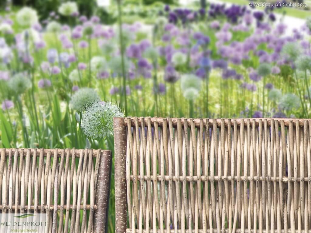 Gartengestaltung Anzucht & Pflanzen Weidenprofi GmbH
