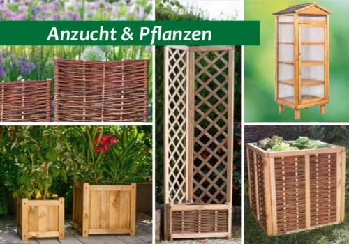 Gartengestaltung: Anzucht & Pflanzen