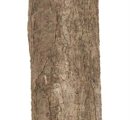 Holzpfosten